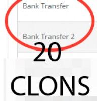 20 клонов банковского перевода (bank_transfer)
