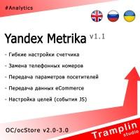 TS Yandex Metrika v1.1