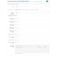 TS Yandex Metrika v1.3